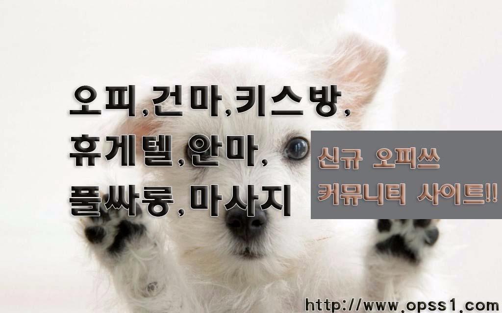 「공덕오피」오피쓰 (@gwanghwamunopss) Cover Image