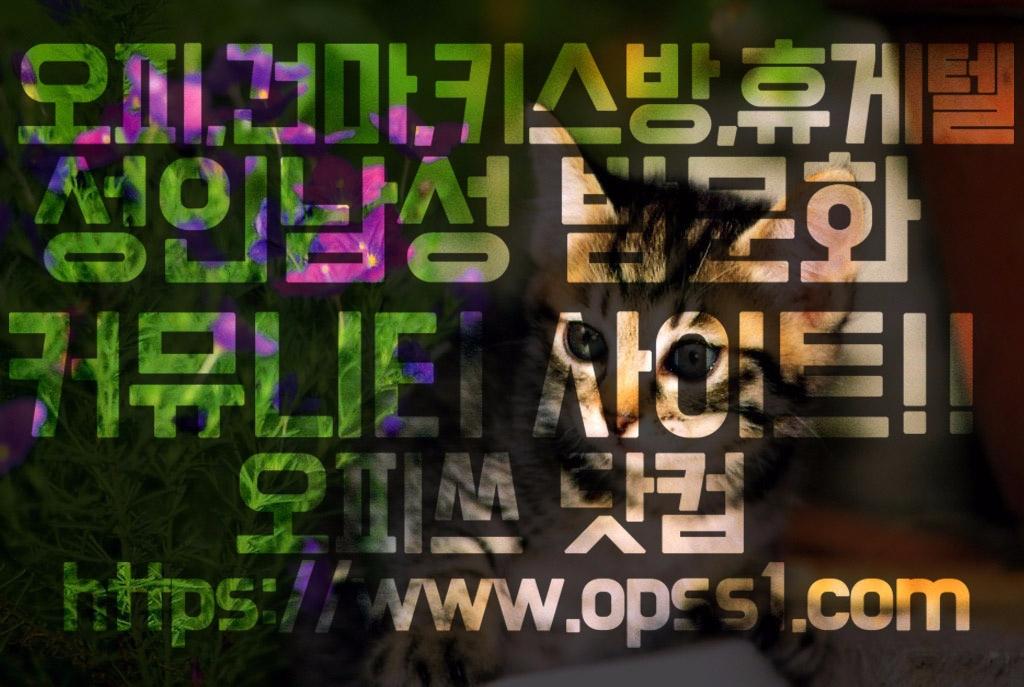 송파건마[오피쓰] (@songpagunma) Cover Image