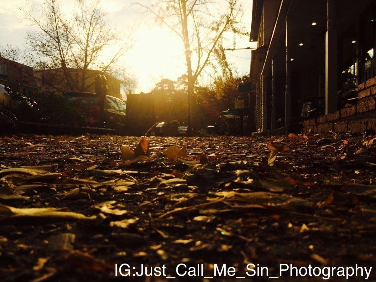 Jules (@just_call_me_sin_photography) Cover Image