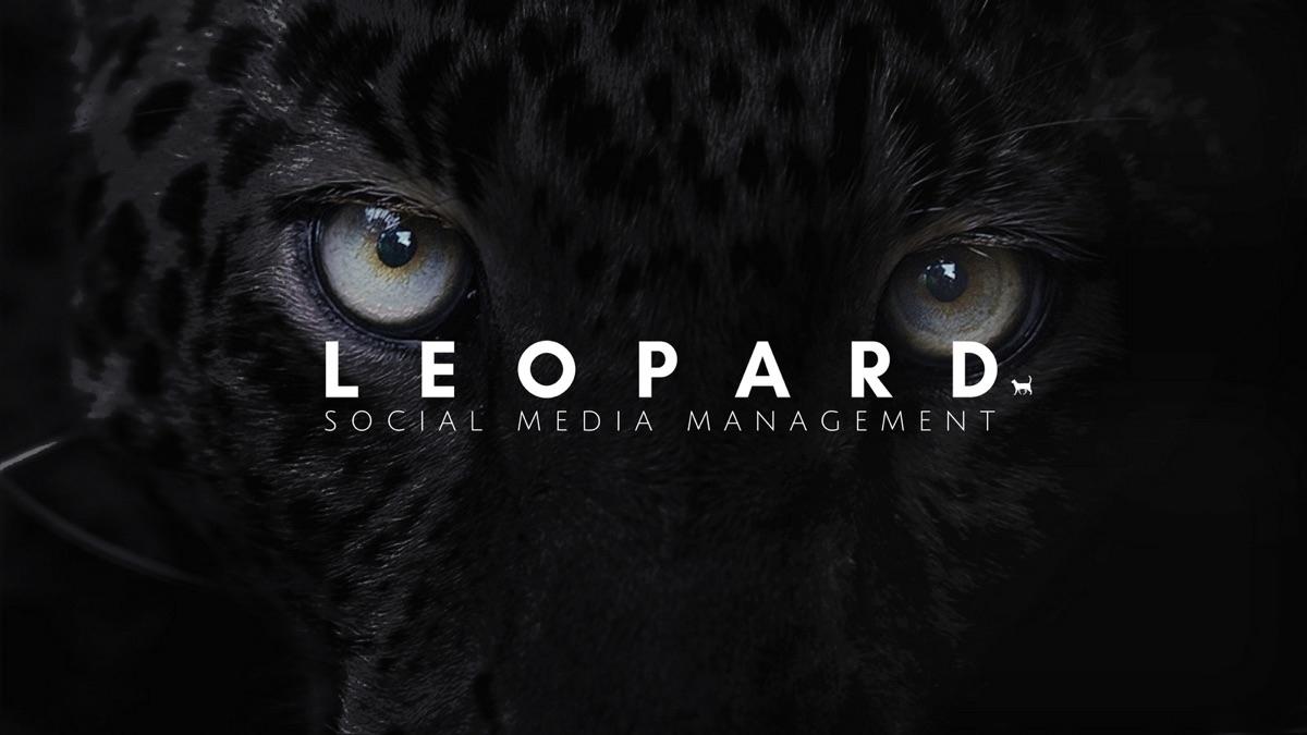 Leopard Social Media (@medialeopard) Cover Image