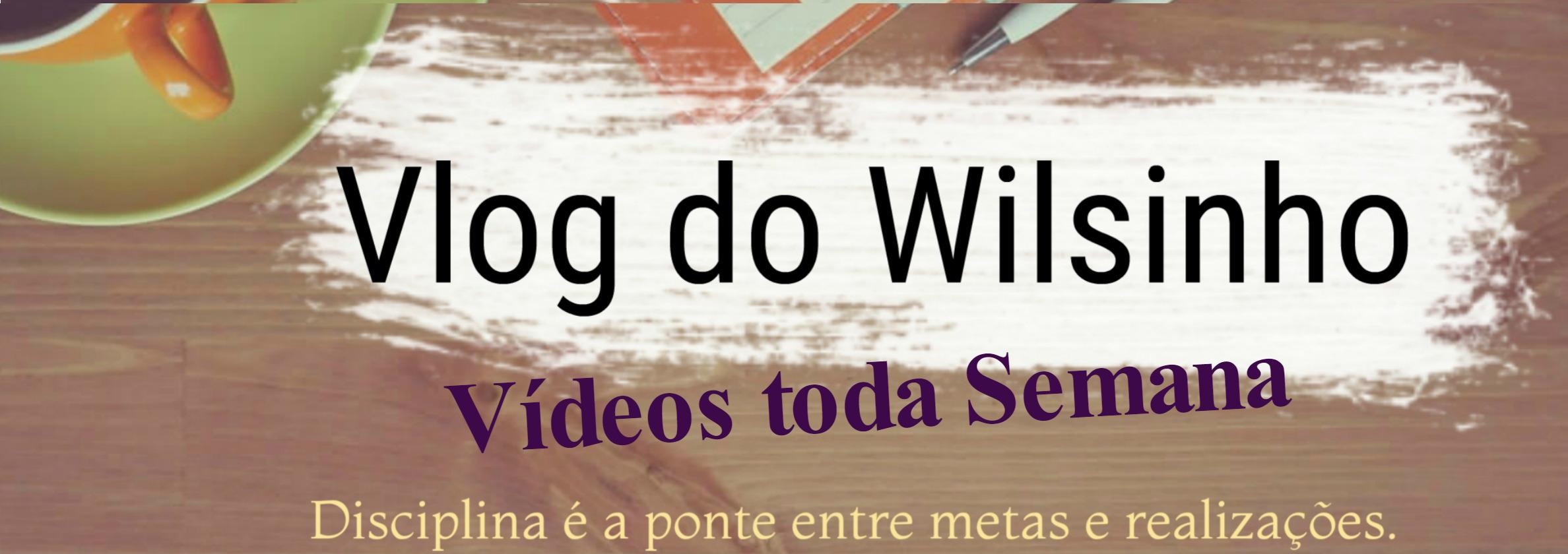 Wilson Tavares (@wilsinhotavares) Cover Image