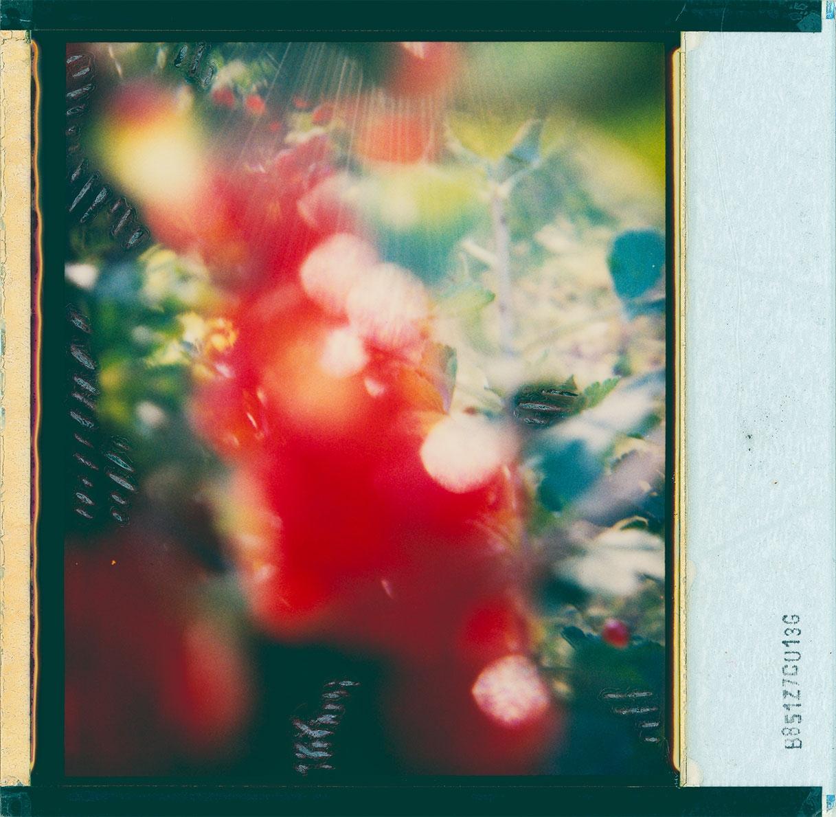 MINIMAN (@minimanart) Cover Image