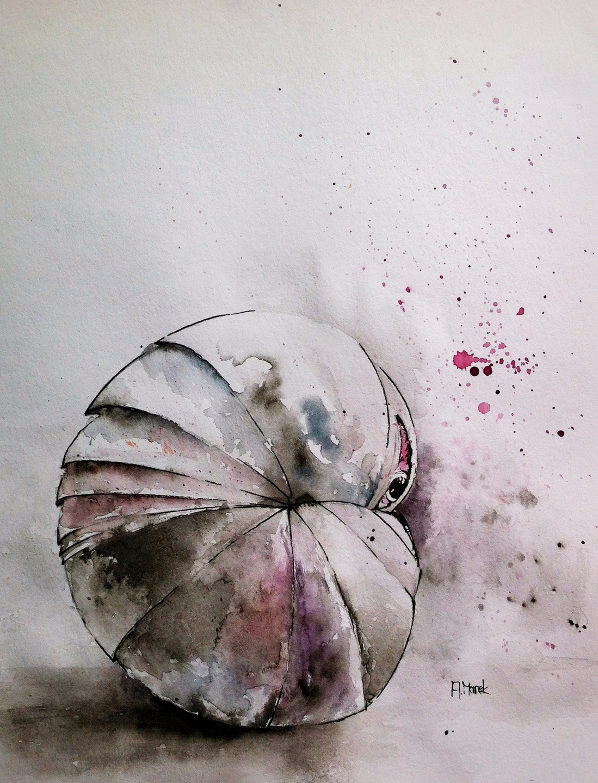 Antoni Maria Marek (@amarek) Cover Image