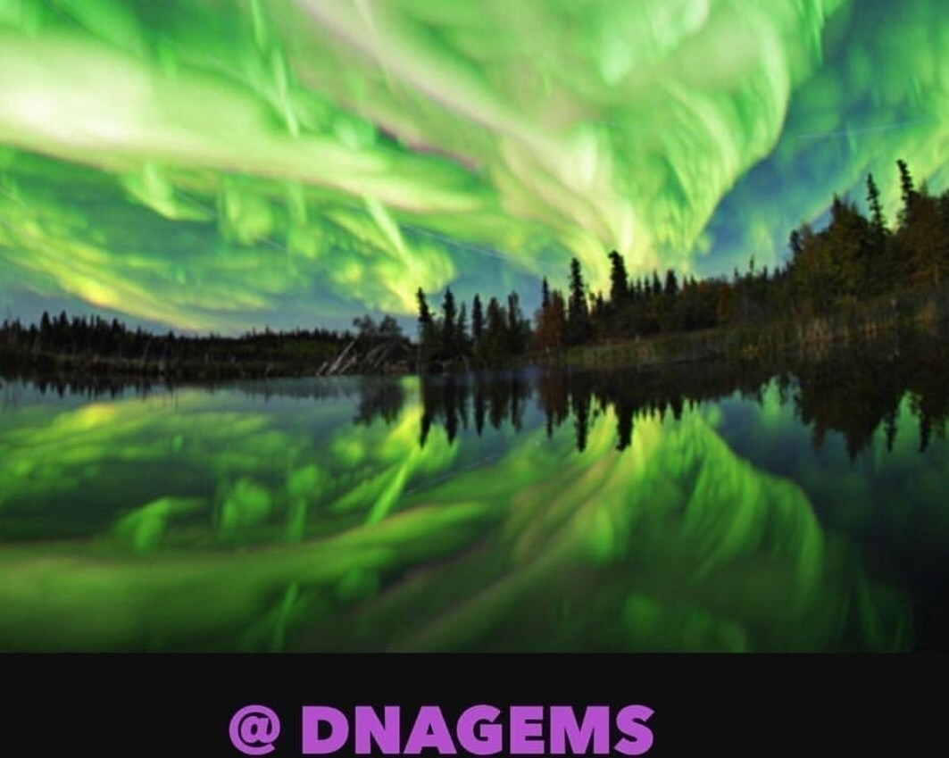 @dnagems Cover Image