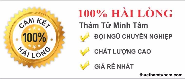 Dịch Vụ Thám Tử Tư Minh Tâm (@dvthamtu) Cover Image