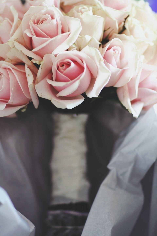 Ello Weddings (@elloweddings) Cover Image