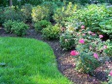Atlanta Landscape and Fertilization (@atlantalandscap) Cover Image