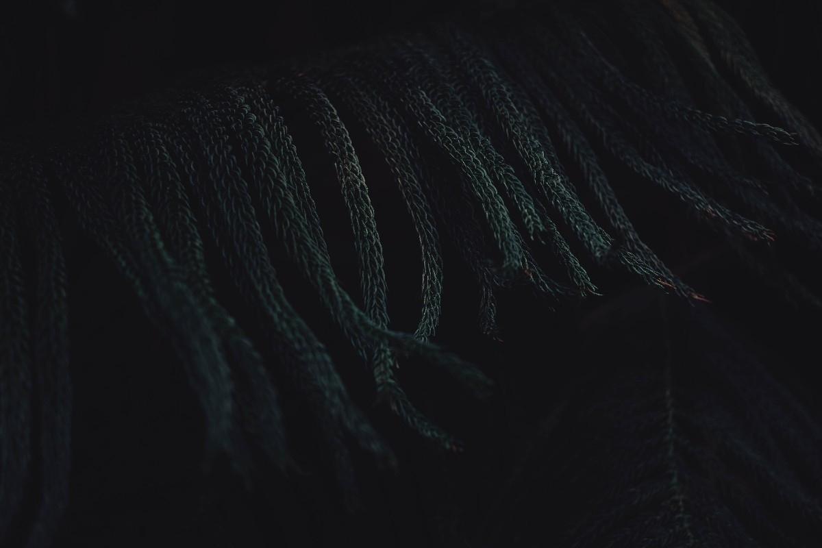 Iyoshi (@blvckwyrt) Cover Image