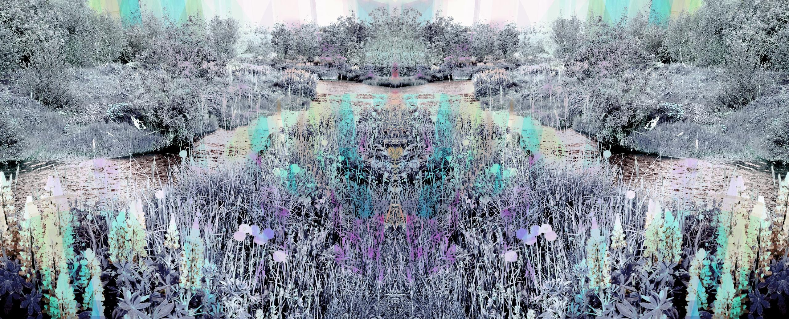 Gabriela Fuente (@gabrielafuente) Cover Image