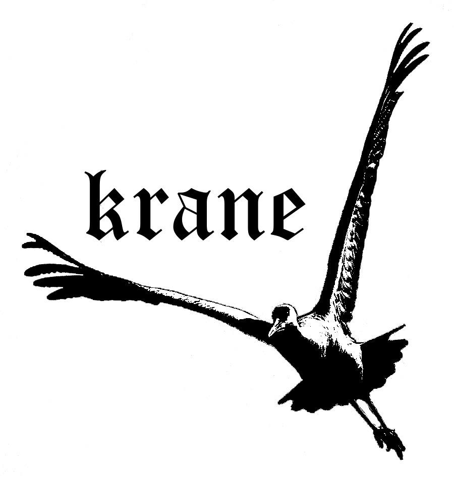 Krane Studios (@kranestudios) Cover Image