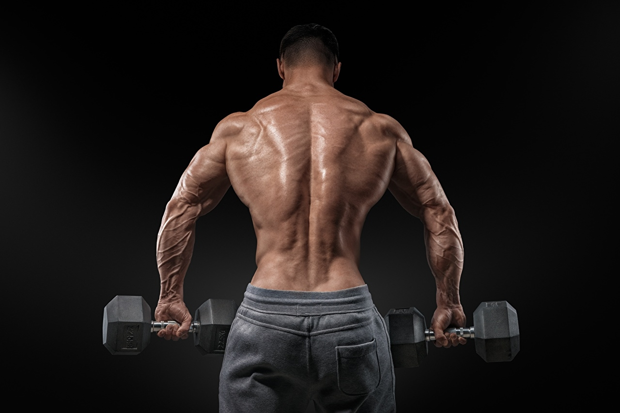 Anabolic Steroid (@anabolicmenu) Cover Image