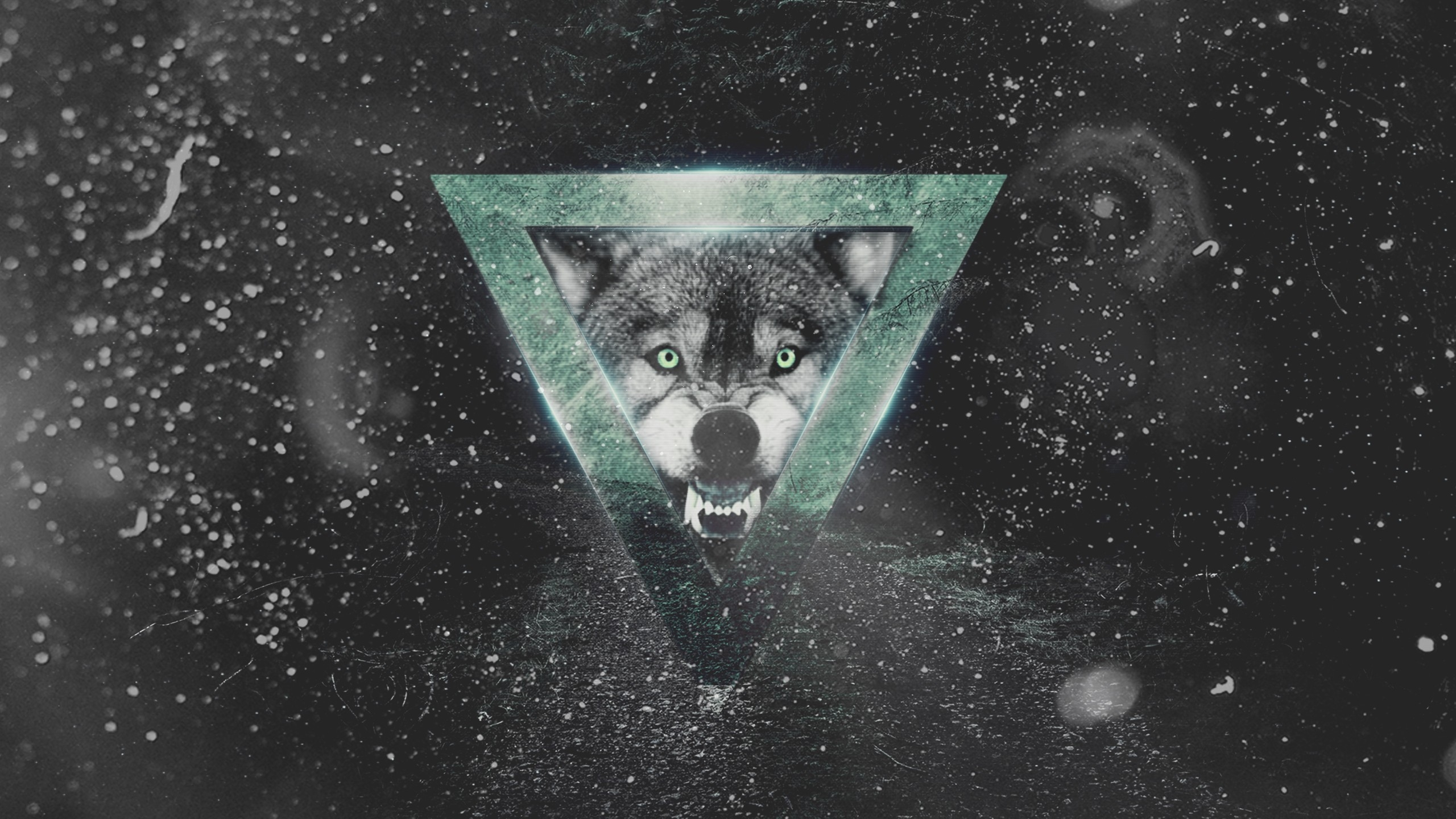 Lazar (@moonya91) Cover Image