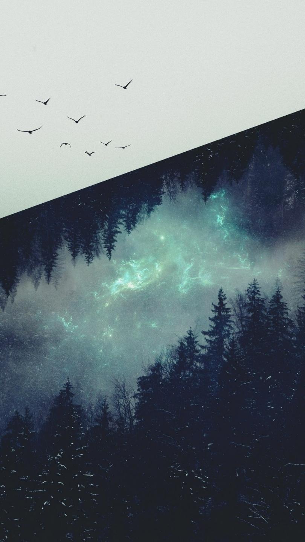 Yasmee (@y_hamel) Cover Image