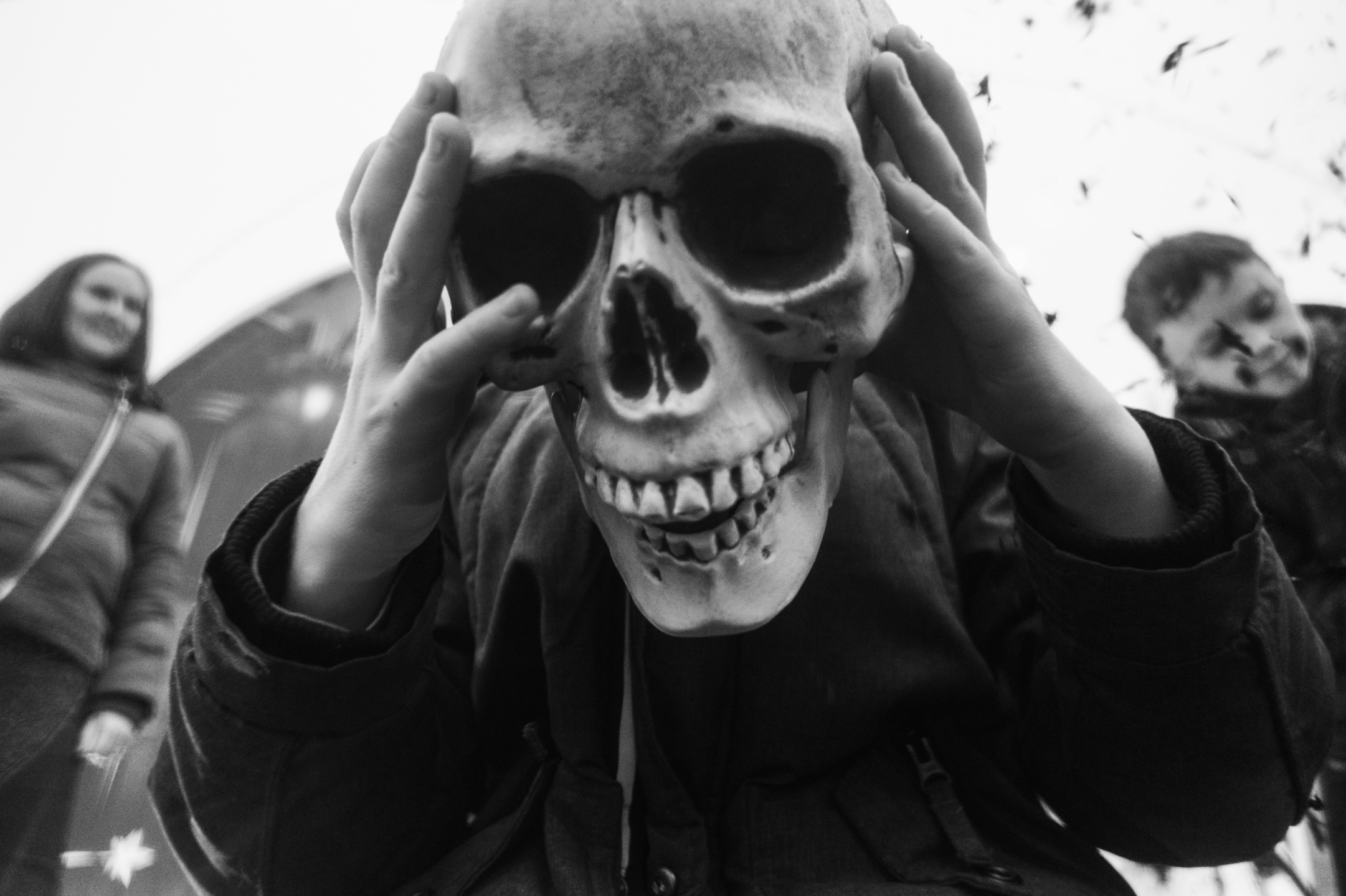 Steven Hume (@stevehumephoto) Cover Image