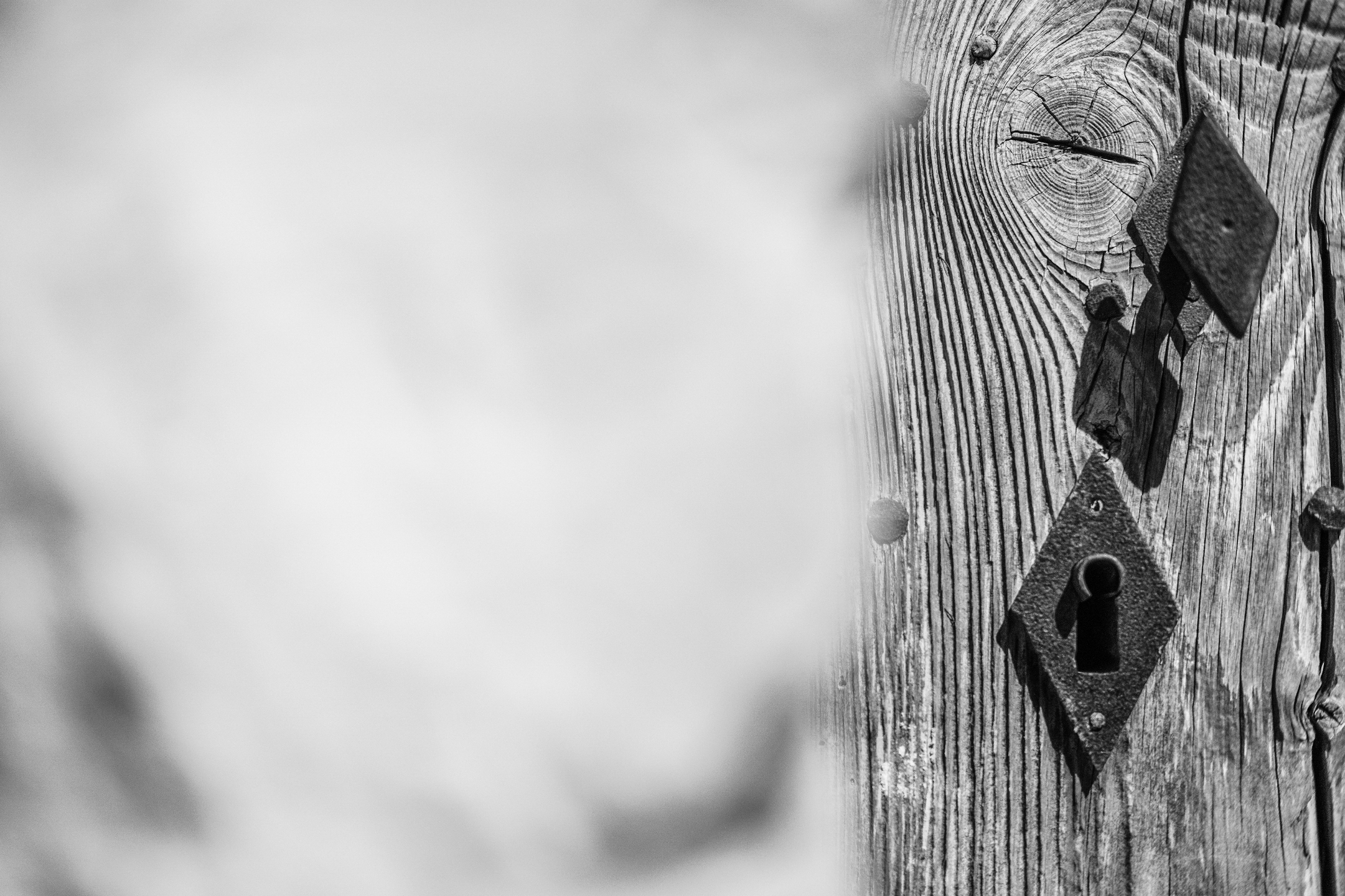 Vladimir Normann (@nordmannphoto) Cover Image