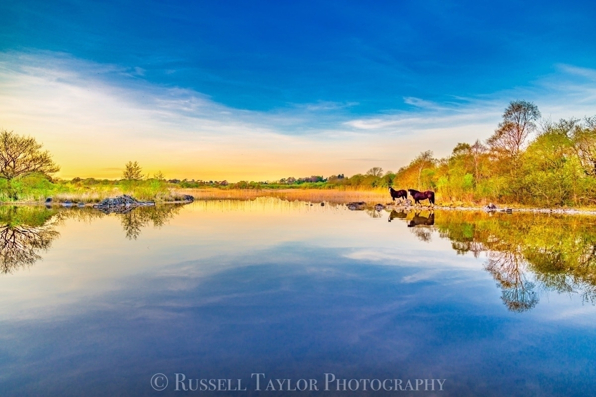 russell taylor (@russelltaylorphotography) Cover Image