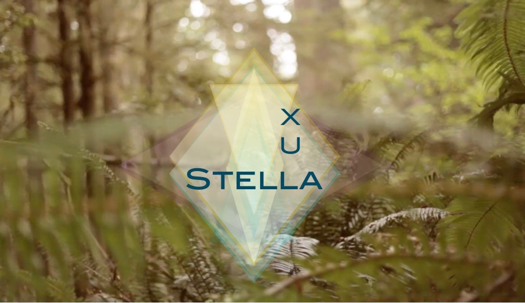Stella Lux (@stellalux) Cover Image