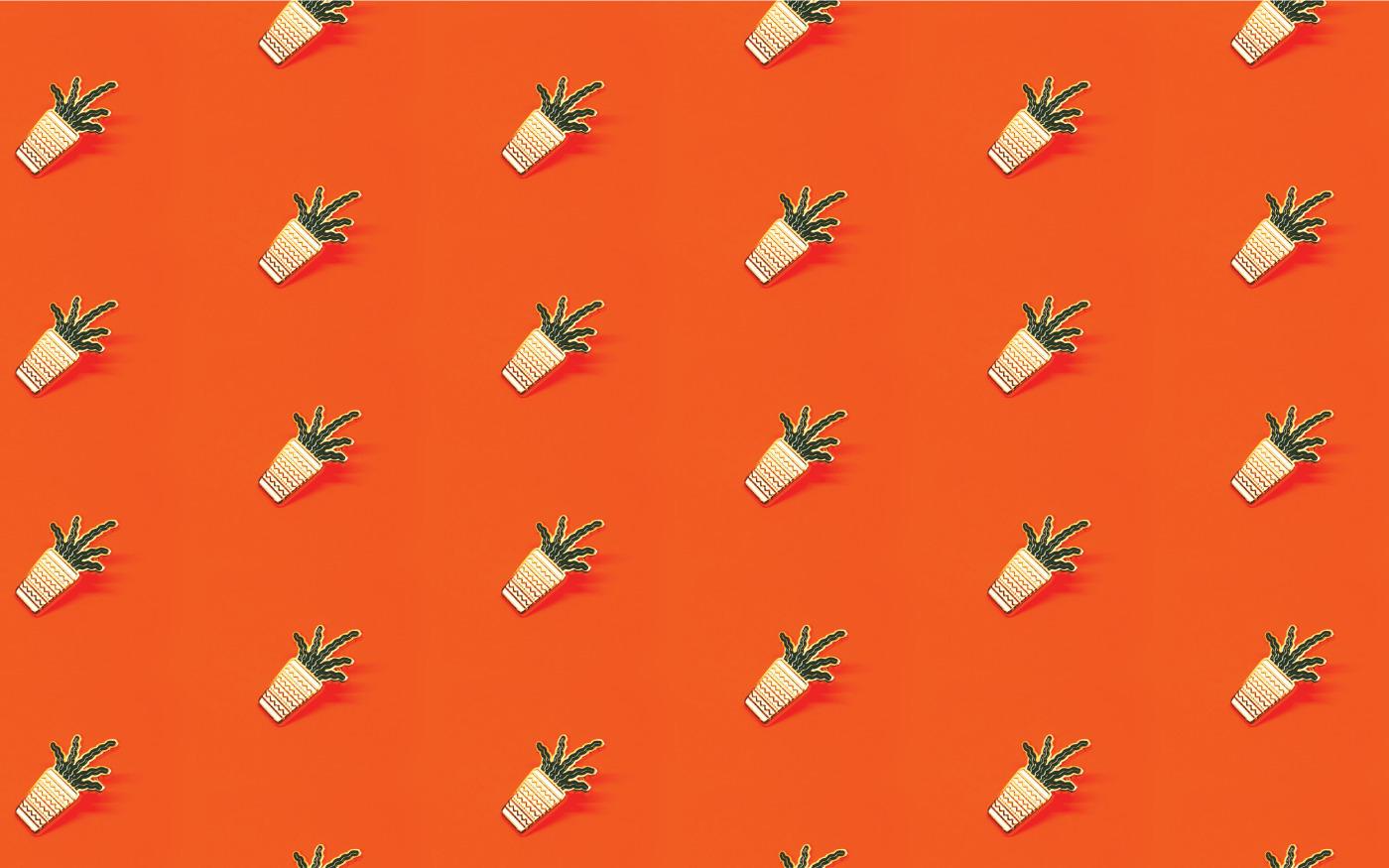 Weekender Supply (@weekendersupply) Cover Image