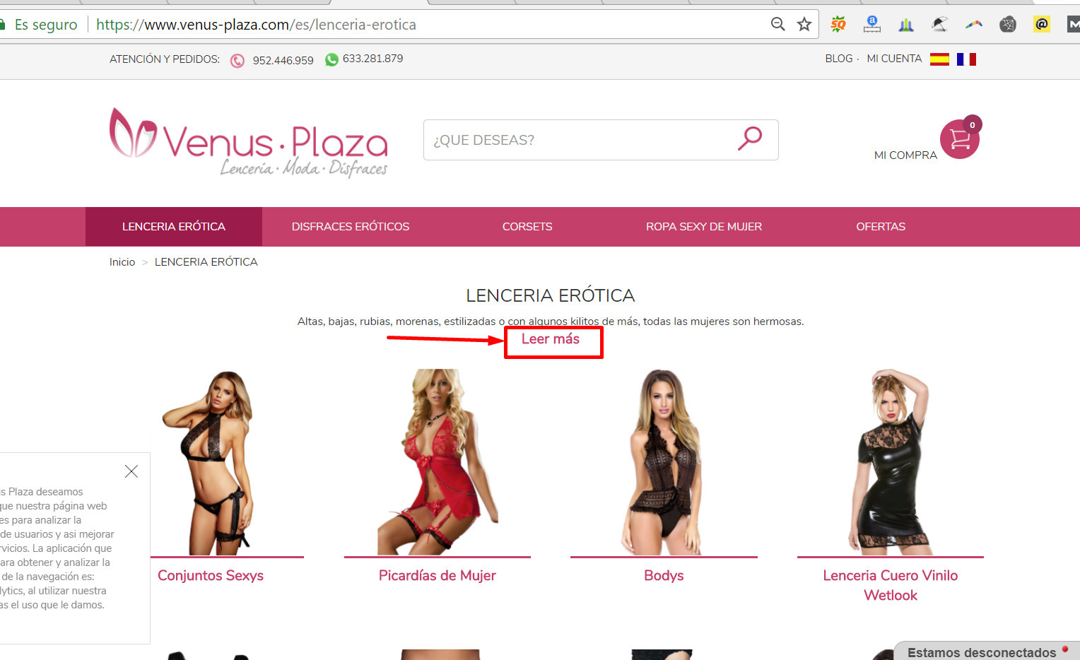 Lencería sexy VENUS PLAZA (@lenceria-venus-plaza) Cover Image