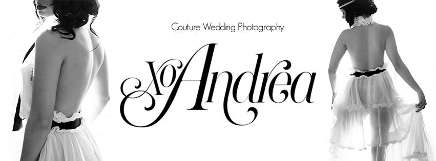 XOANDREA (@xoandrea) Cover Image