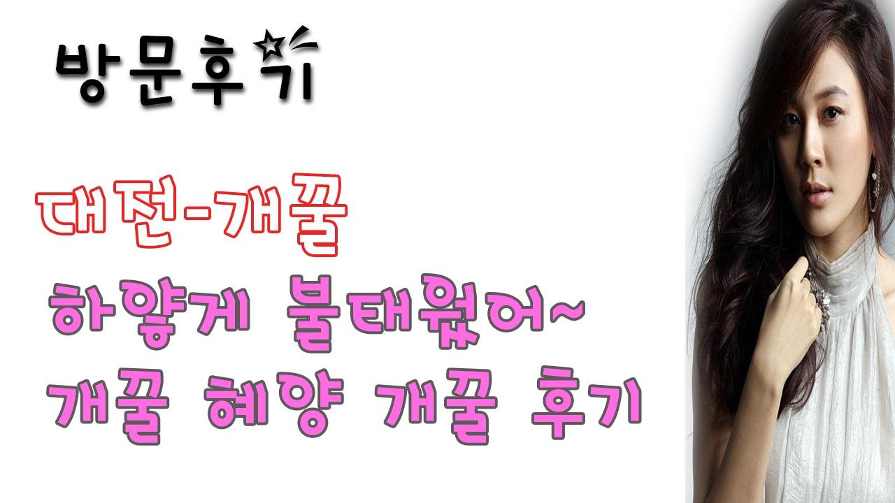 대전개꿀 (@daejeongaekkul) Cover Image