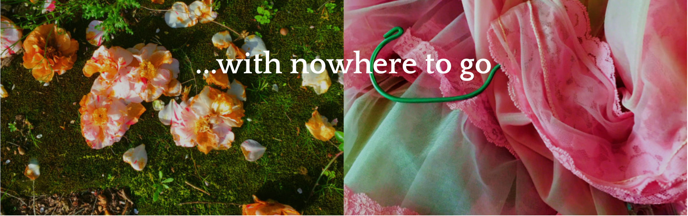 With-Nowhere-To-Go (@with-nowhere-to-go) Cover Image