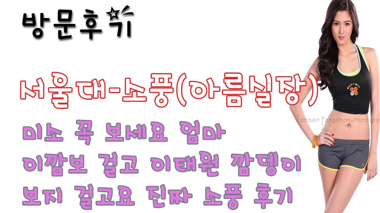 서울대소풍(아름실장) (@seouldaesopungaleumsiljang) Cover Image