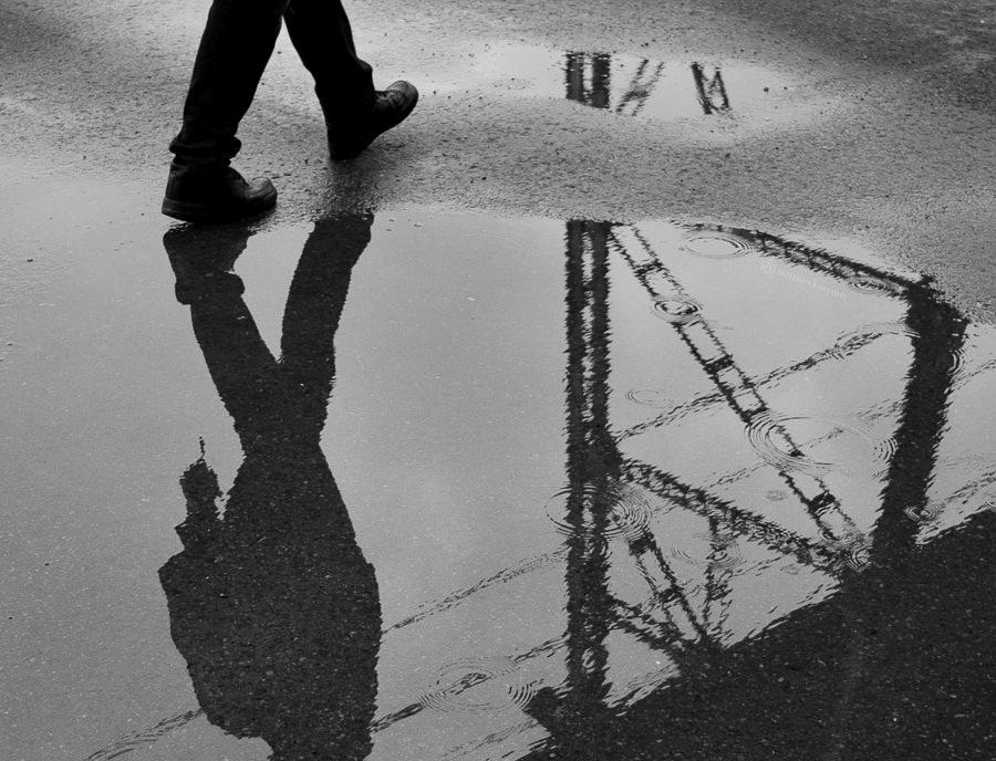 Ilonka Albert (@albyphotography) Cover Image