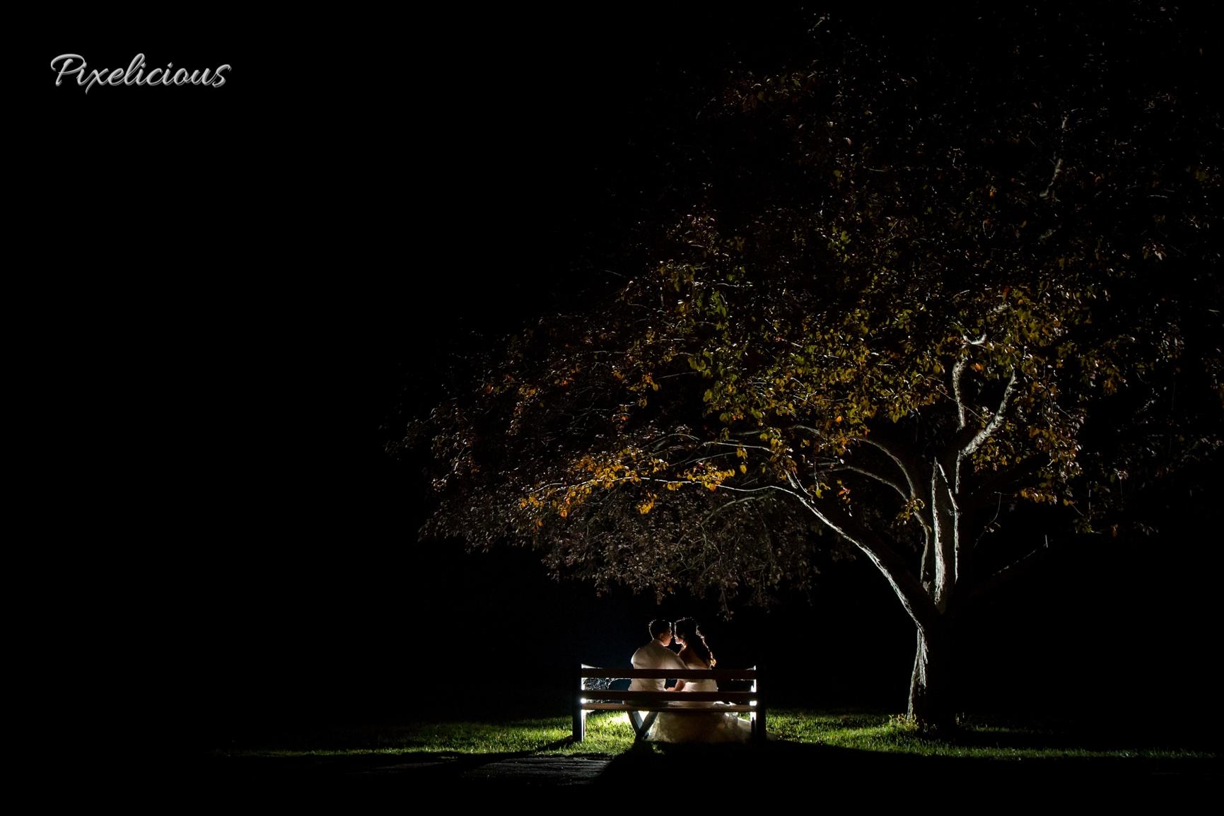 Pixelicious (@pixeliciousphoto) Cover Image