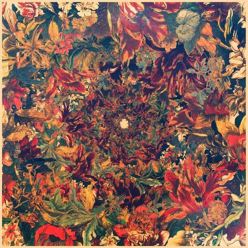 hayoko_moon (@takimoon) Cover Image