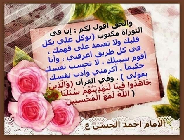 al (@ali313) Cover Image