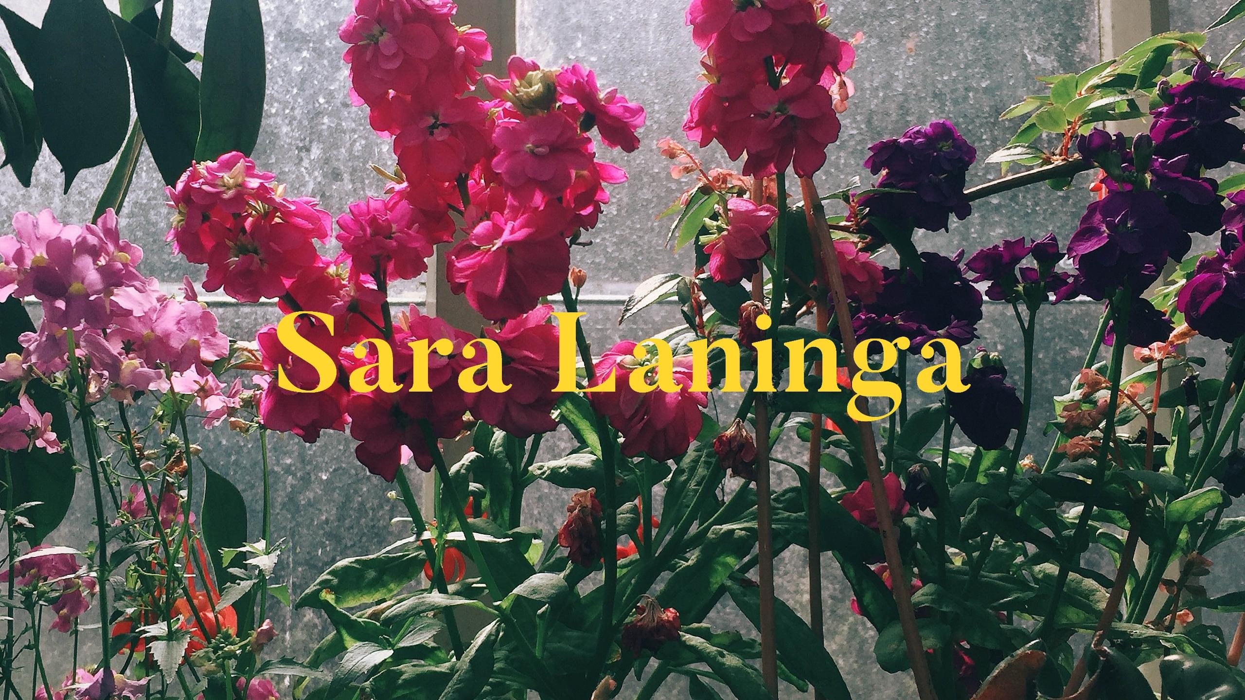 Sara (@saralaninga) Cover Image