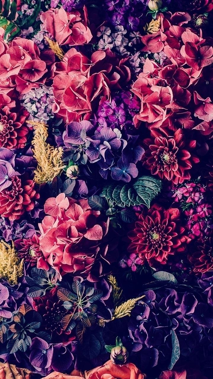 ELIAGAM (@eliagam) Cover Image