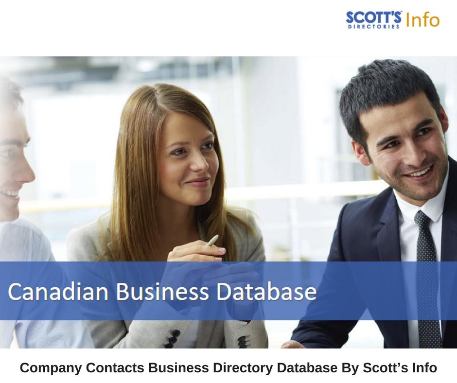 Scott's Info (@scottsinfo) Cover Image