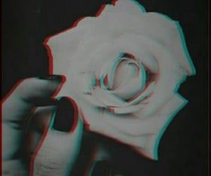 amona (@amona4real) Cover Image