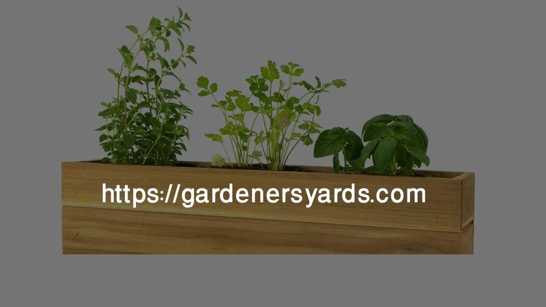 Gardeners Yards (@gardenersyards) Cover Image