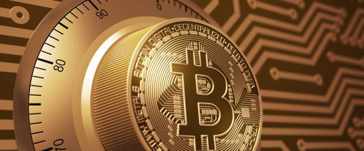 Crypto Bitcoins Guide USA (@cryptobitcoinguide) Cover Image