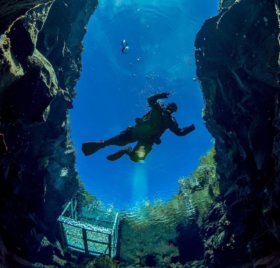 Diving Island (@divingisland) Cover Image