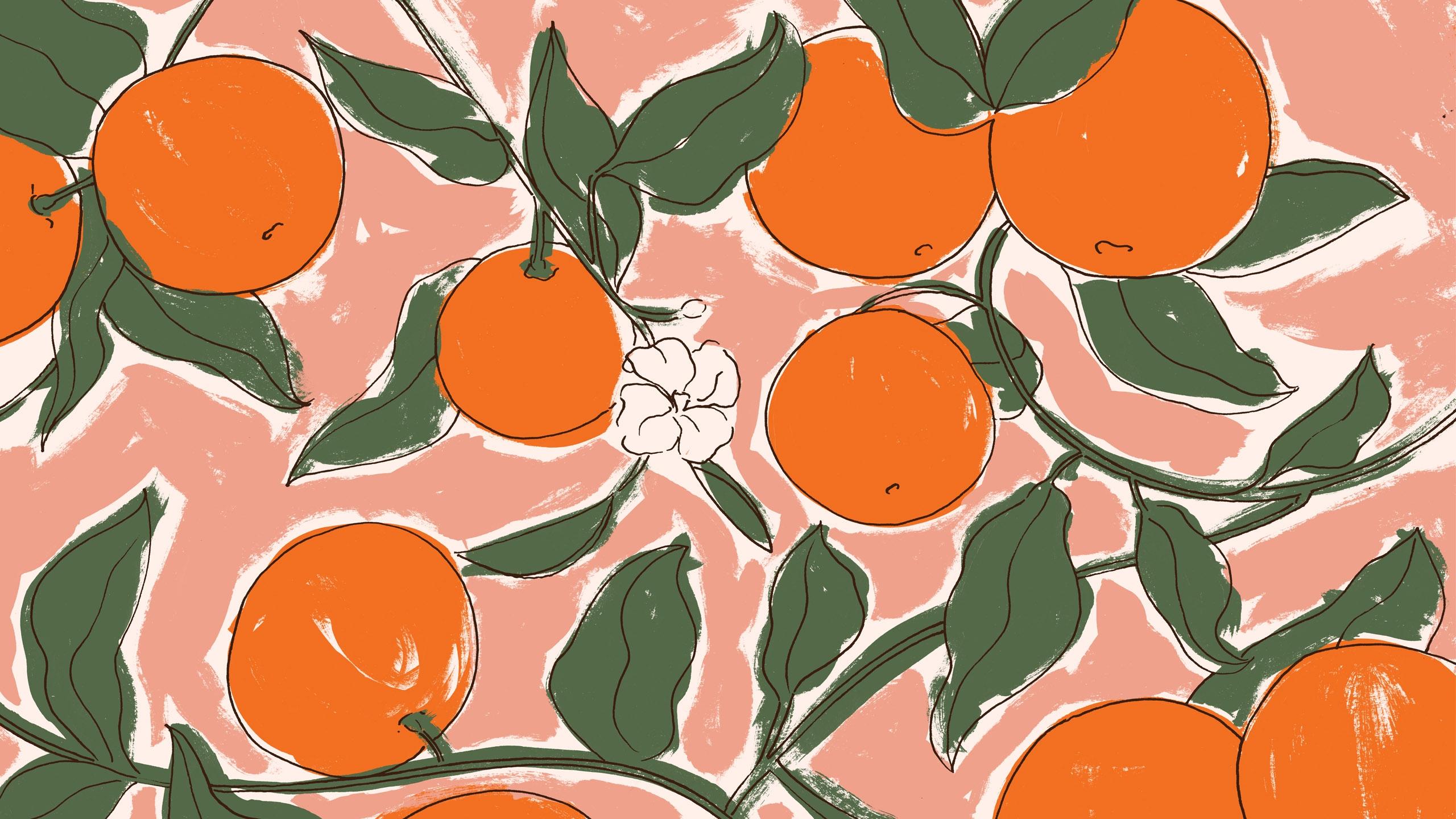 Mariana Simão (@olamarianasimao) Cover Image