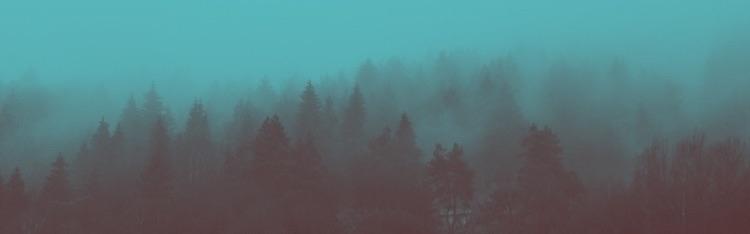 Sven (@hej_sven) Cover Image
