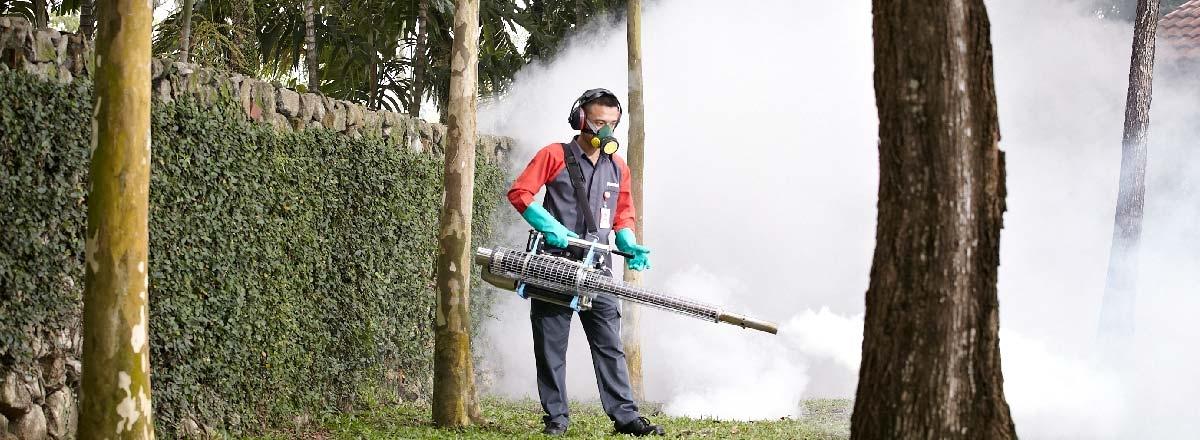 Affordable Termite Control (@affordabletermitecontroloc) Cover Image