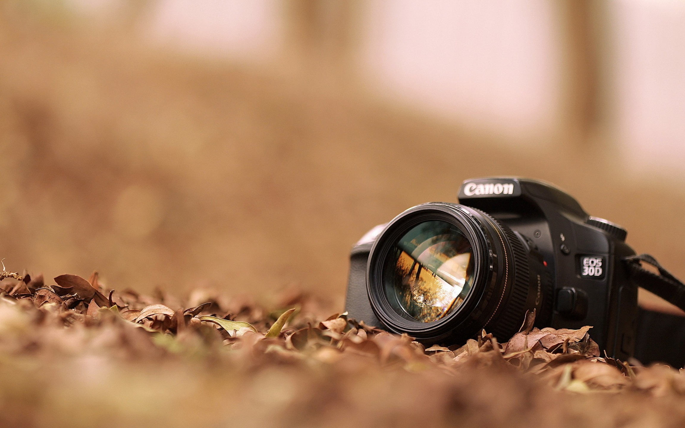 Vijay Soni Photography (@vijaysoniphotography) Cover Image