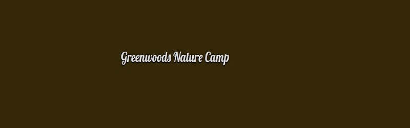 GreenwoodsNaturecamp (@greenwoodsnaturecamp) Cover Image
