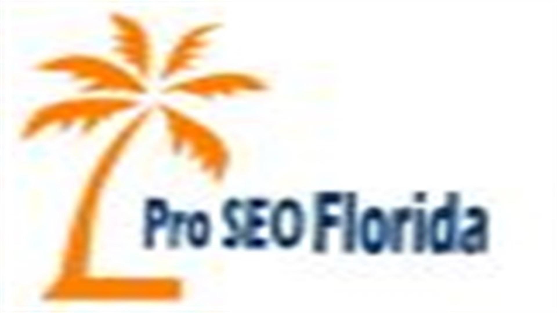 Pro Florida SEO Service (@seoflorida11) Cover Image