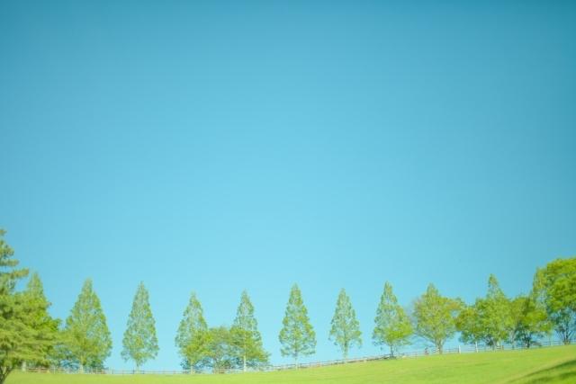 森智宏 (@mori_tomohiro) Cover Image