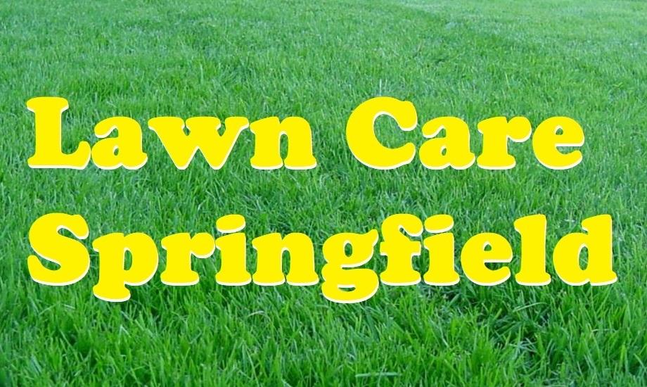Lawn Care Springfield IL (@markrules74) Cover Image