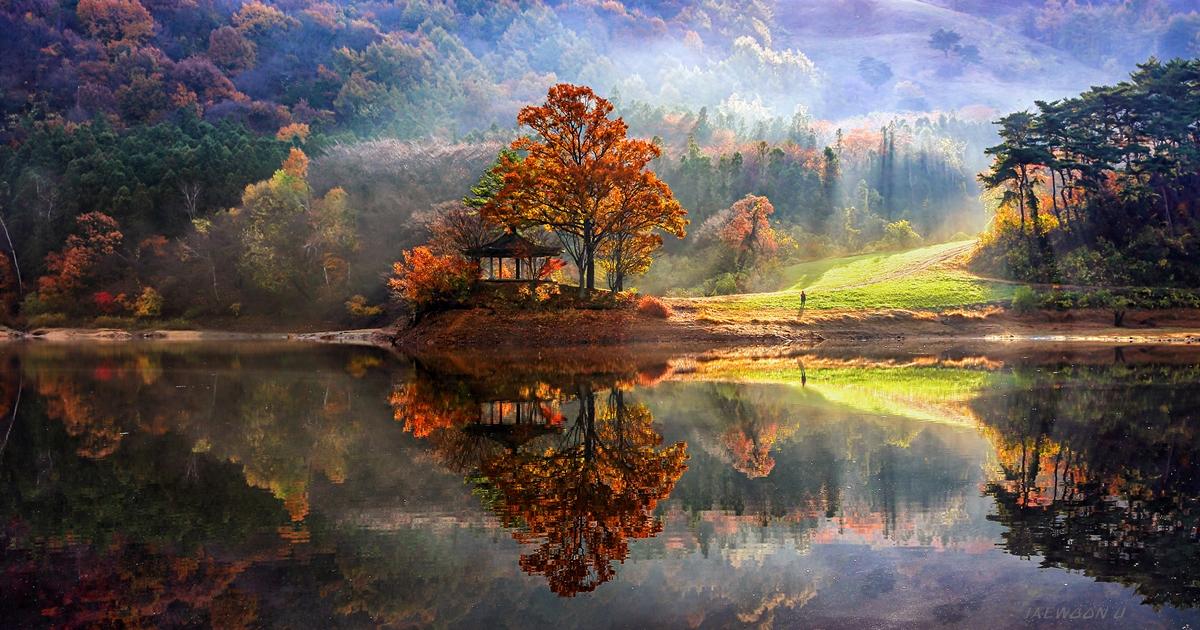 Landscape Concepts (@lcifrederick1) Cover Image
