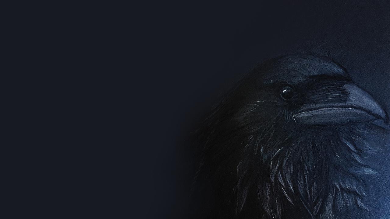 Blackwood (@blckwd) Cover Image