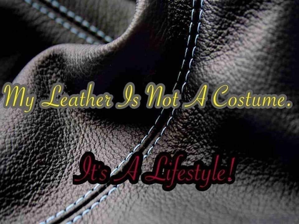 B (@littleb456) Cover Image