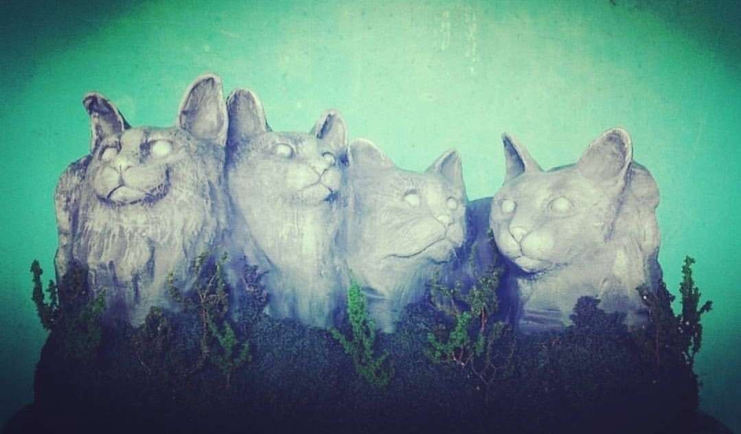 (@catsruleall) Cover Image